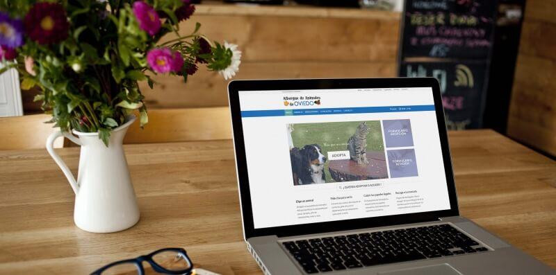 pagina web del albergue de animales de Oviedo - Cliente