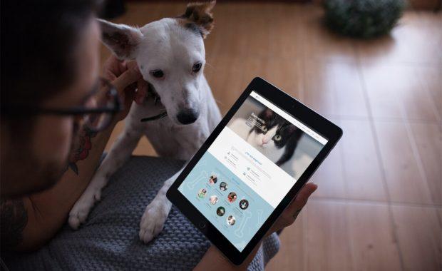 proyecto web clinica veterinaria