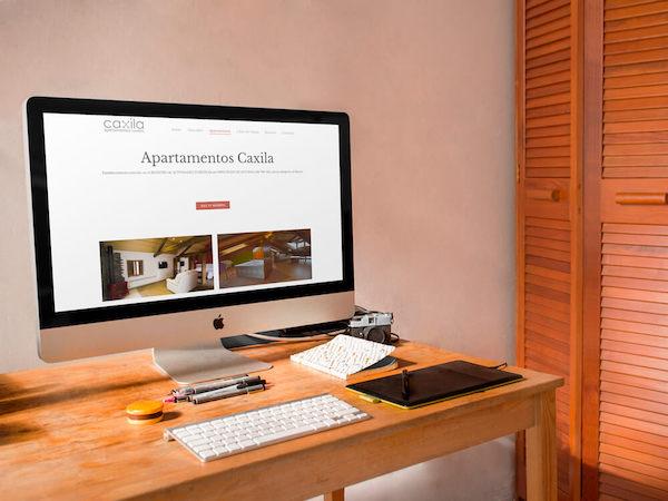 ejemplo-3-diseño-web Valladolid
